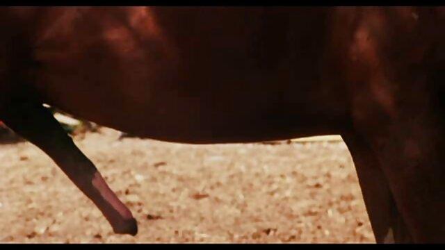 دیانا شاهزاده در جوراب ساق بلند رنگارنگ طول گروه تلگرام سکسب می کشد دیک بزرگ عاشق او